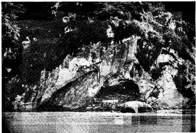 The Grotto in 1858 where Our Lady appeared to St Bernadette